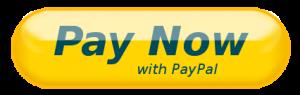 PayNowButton